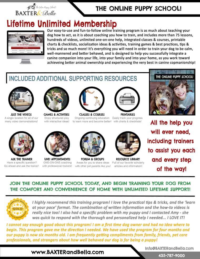 Baxter and Bella Online Puppy School info sheet